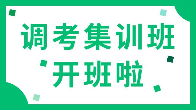 望子成龙学校调考集训班开班啦!